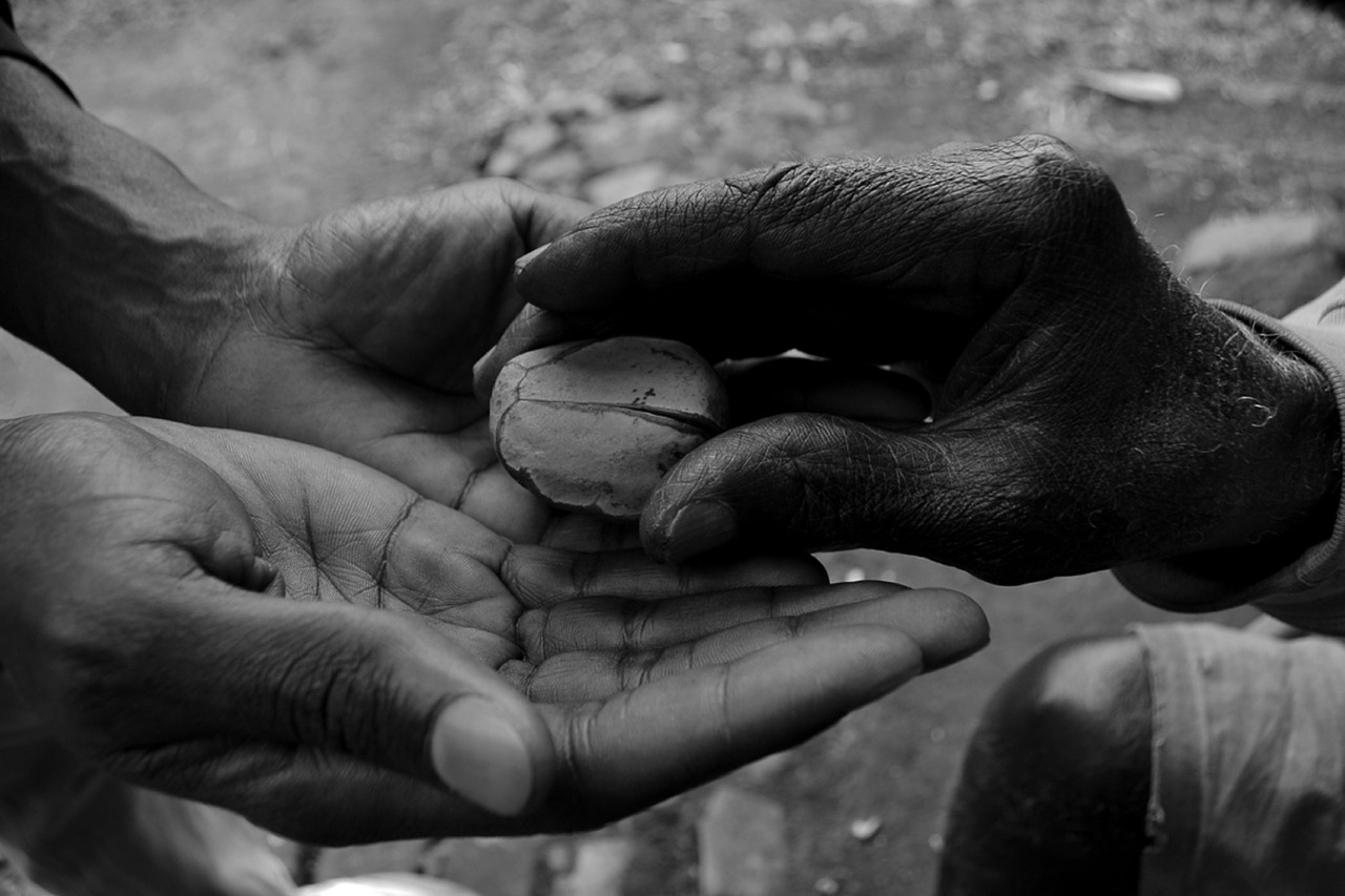 kola nut, offering, african